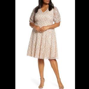 Eliza J Lace Blush Fit & Flare Mini Dress Size 22W